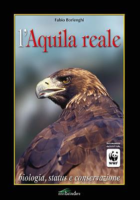 copertina_aquila_reale_borlenghi