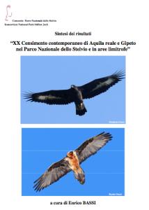 xx_censimento_aquila_gipeto_sintesi_risultati
