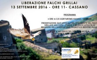 liberazione_grillai_cassano_murge